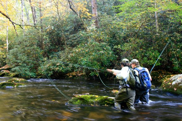 Fly Fishing, Smoky Mountains National Park
