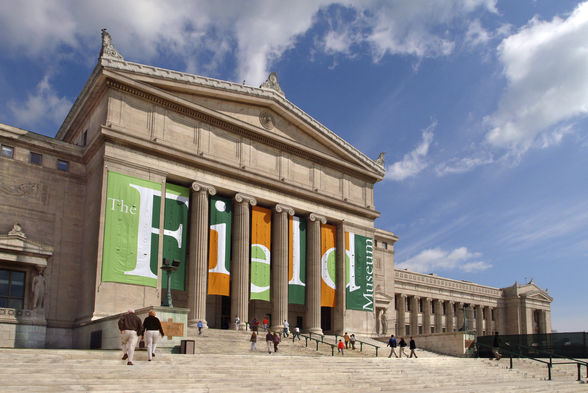 The Field Museum focuses on natural history with incredible fossils and artifacts, even some dinosaurs and mummies | WhereTraveler