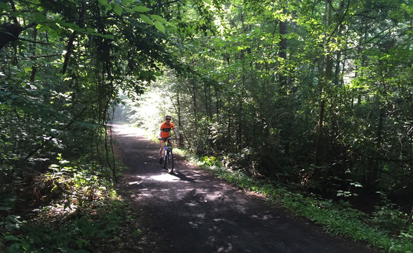 Virginia Creeper Trail in the forest