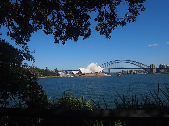 Views to the Sydney Opera House and Harbour Bridge from near Mrs Maquarie's Chair