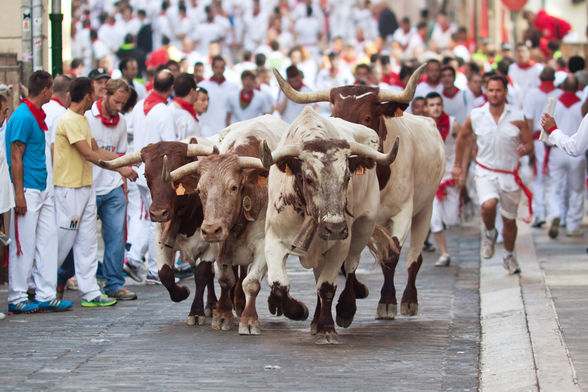 Bulls running in Pamplona
