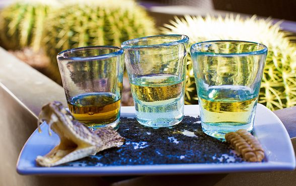 A trio of tequilas.