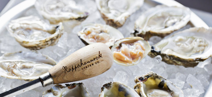 A plate of raw oysters on the half shell at Eat the Rich