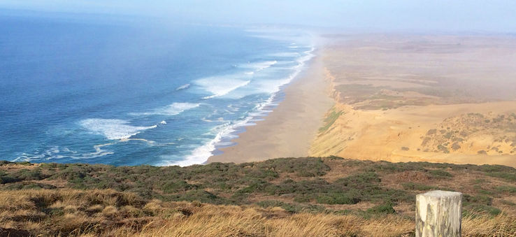 Point Reyes is home to miles of beaches.