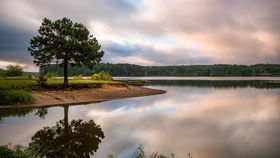 Falls Lake State Park offers visitors access to a 12,000-acre reservoir. (N.C. Division of Parks and Recreation)