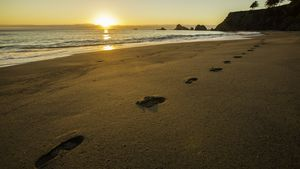 The coast of Mendocino County north of San Francisco is home to wild and quiet beaches.