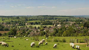 The picturesque hills of Cotswolds