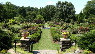 Philadelphia's Morris Arboretum in summer exemplifies Chestnut Hill vibe.