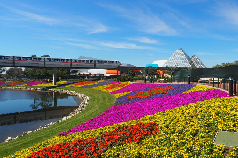 Monorail and Flower Beds During Epcot International Flower and Garden Festival